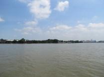 Bangkok's Green Lung