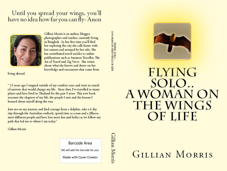 Flying Solo; A Woman on the Wings of Life