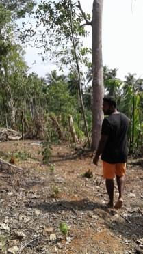 Healthy Living in Sri Lanka