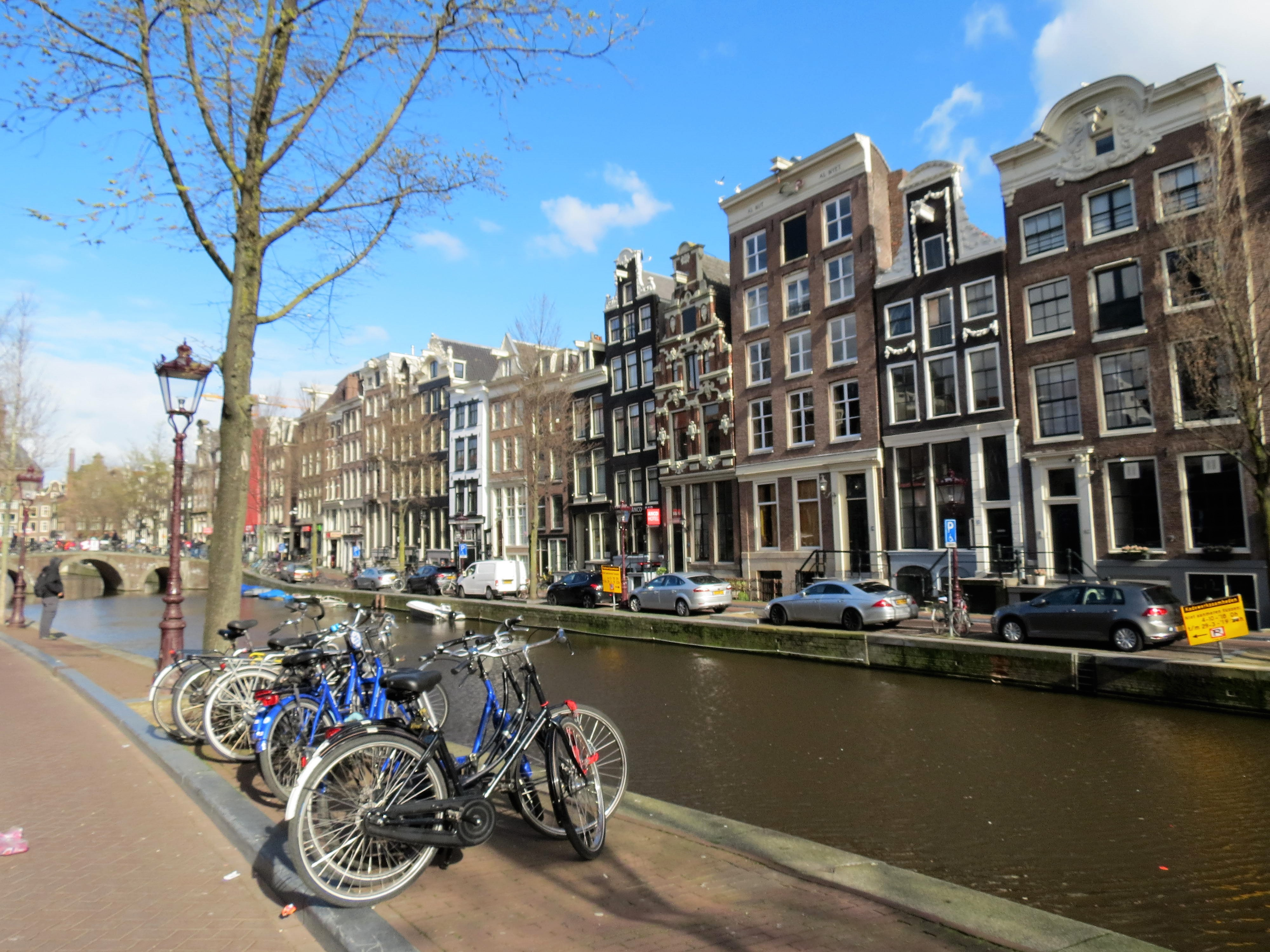 Things to do in Amsterdam