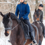 7 Winter Horse Riding Exercises To Keep Motivated Talking To Horses