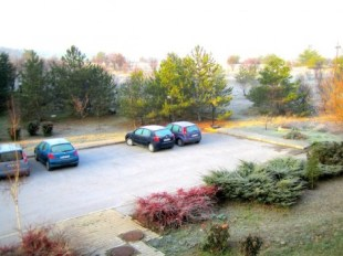 It's a FROSTY morning... Brrrrr!