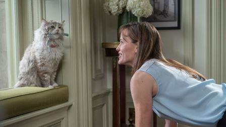 Jennifer Garner and Mr Fuzzypants in Nine Lives