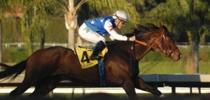 Runhappy on his way to winning the Malibu at Santa Anita Park. Photo by Nicholas Keith.