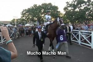 SA_BreedersCup_Mucho Macho Man