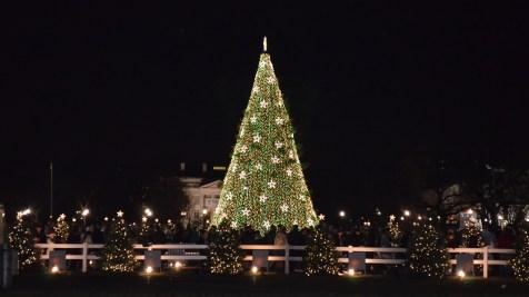us_national_christmas_tree_2012