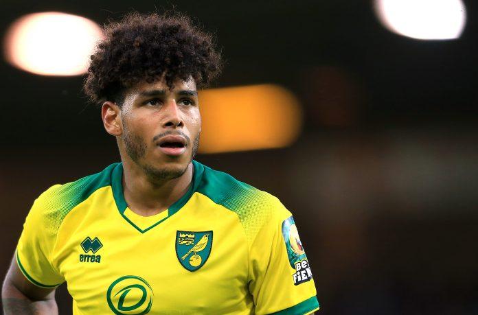 Norwich aportará valor de entretenimiento a la Premier League