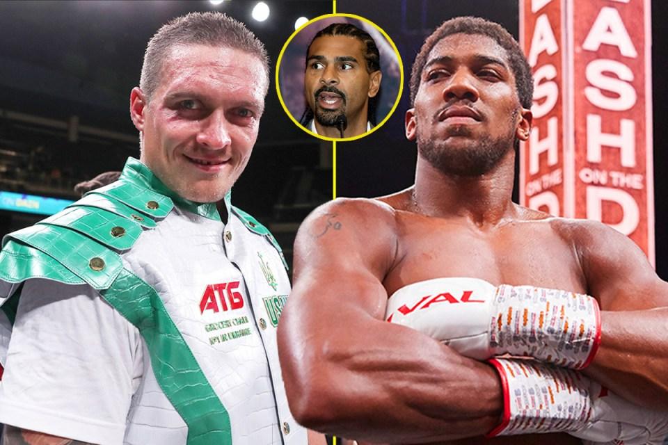 David Haye recently backed Joshua to beat Usyk
