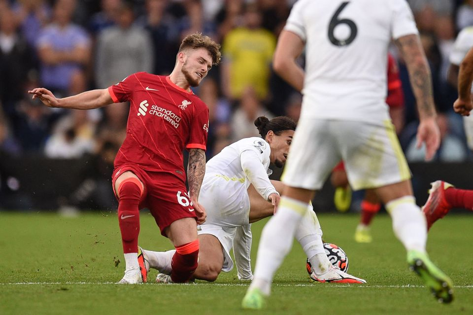 Elliott dislocated his ankle against Leeds United