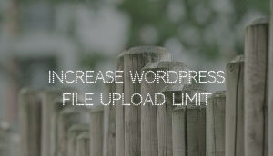 wordpress-limits