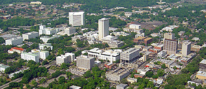 Leon County Economy Ends Slide in July, Adds 460 Jobs