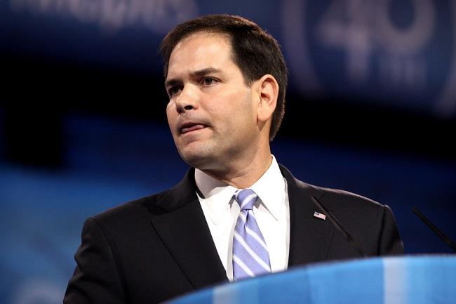 Rubio Leads in Early Florida Senate Race Poll