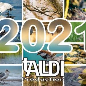 Vogelkalender 2021