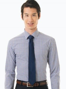blue and brown gingham