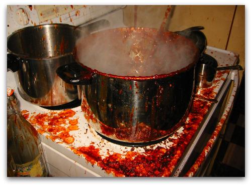 kitchen disaster: burnt batch of ketchup
