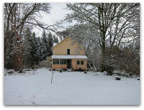 Vashon Snow Day - peach house, white snow