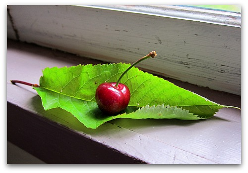 Summertime and the Pittin' is Easy: A Better Way to Pit Cherries