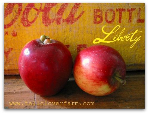 delicious liberty apples