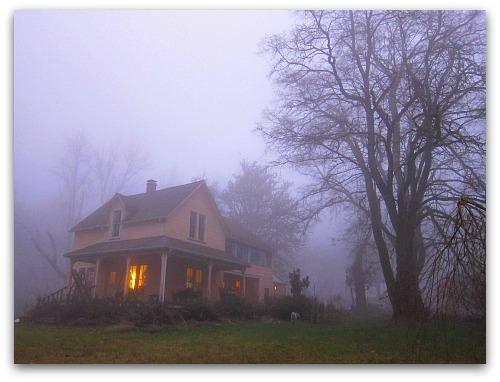 vashon island fog