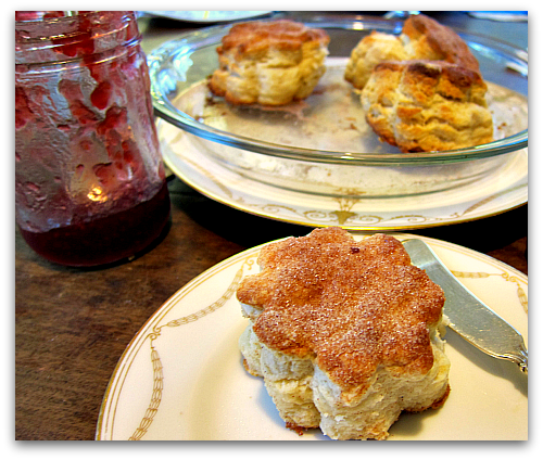 Biscuits for Breakfast (Lunch and Dinner)