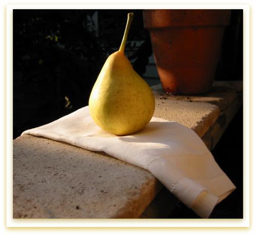 Tyson Pear: Portrait of an Heirloom Fruit