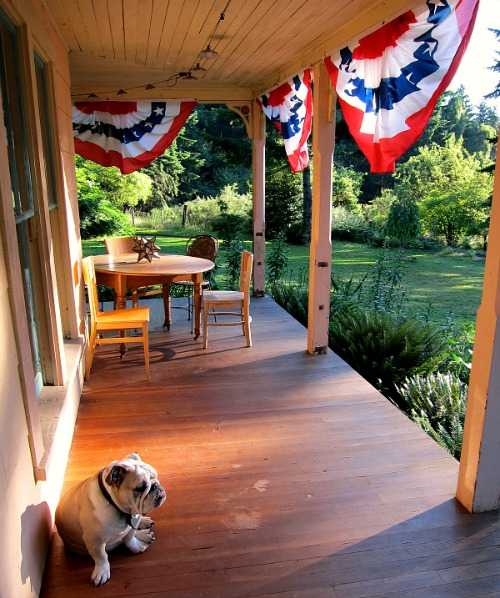 May The Fourth Be With You Waterside: Good Morning, Fourth Of July!