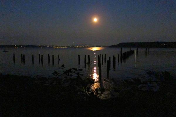 Tramp Harbor