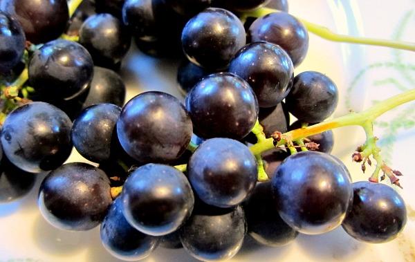 venus grape close-up