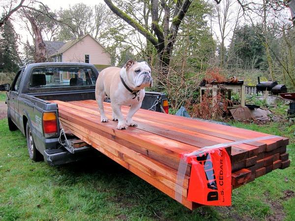 Foreman Boz supervising an off-loading of cedar.