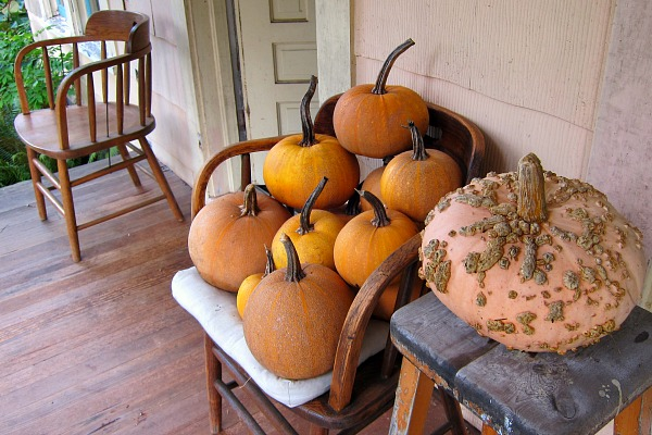 pumpkins on a chair