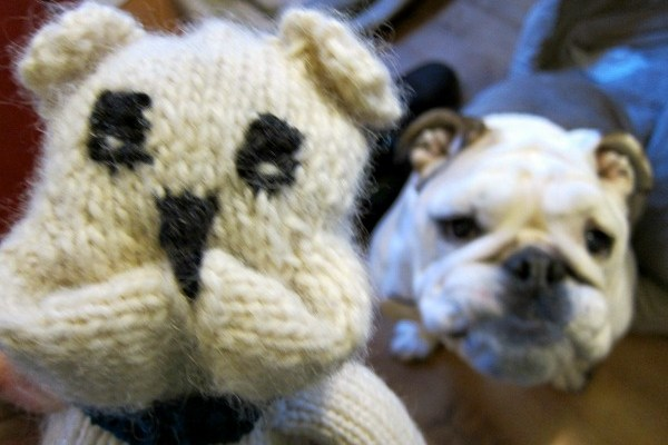 Knitting Up an Awesome Bulldog