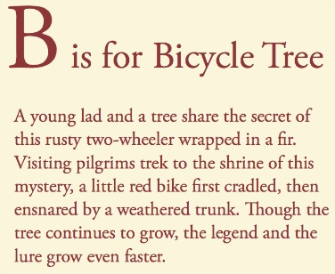 text B is for Bicycle Tree
