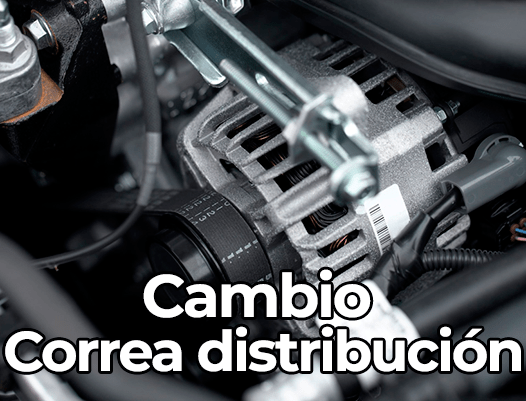 Cambio Correa de distribución
