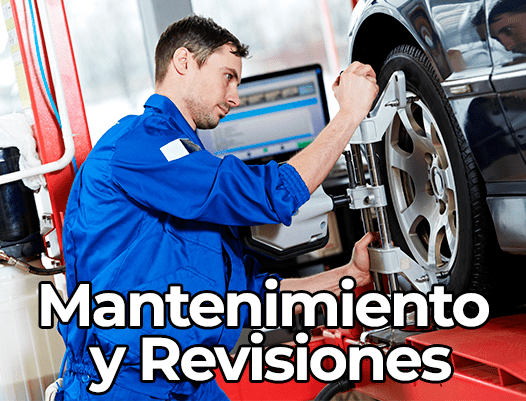 Mantenimiento general y revisiones