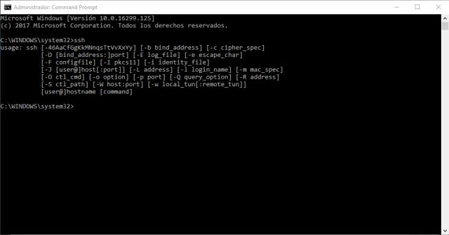 Cliente SSH en Windows 10