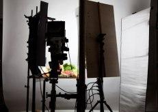 Colodión húmedo en estudio con lamparas CFL
