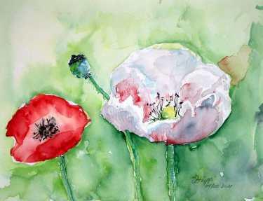 Flores en la naturaleza. Cursos acuarela sobre papel