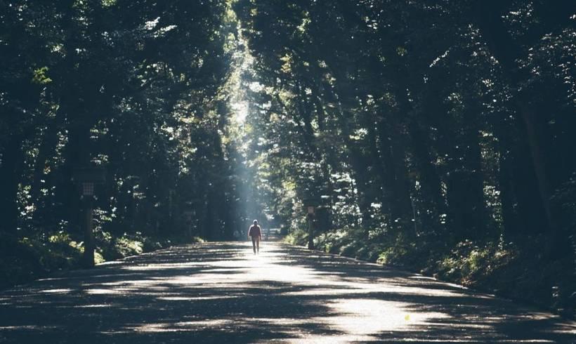 El único viaje real es hacia tí mismo