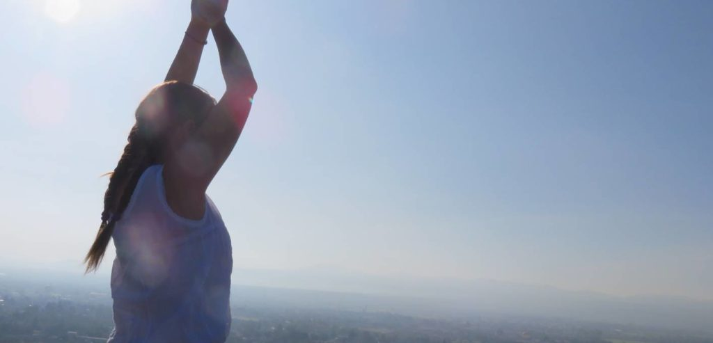 Ayurveda Raja Yoga