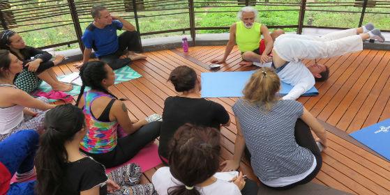 Yoga y Columna Vertebral: Una Lección de Atención Corporal