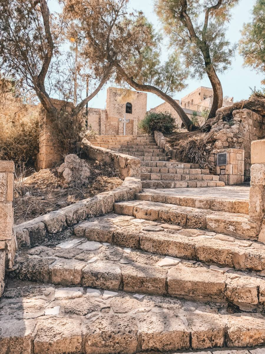 Flight deal! From Geneva to Tel Aviv for €65 return!