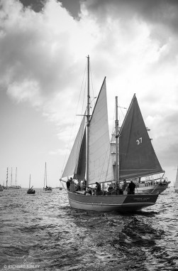 Donna Capel,Tall Ships,Funchal 500, Falmouth,