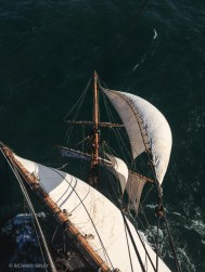 Like a bird in flight - Sailing to Gt Yarmouth