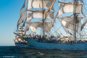 Norwegian full rigger Christian Radich. Background vessel, Amerigo Vespucci