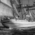 Off Cabo Raso. Lisbon to Cadiz tall ships race 2012