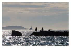 Against the light, Toulon harbour
