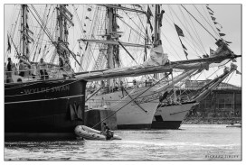 Sunderland,Wylde Swan,Fryderich Chopin