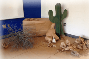 Westward Expansion Cactus and Habitat