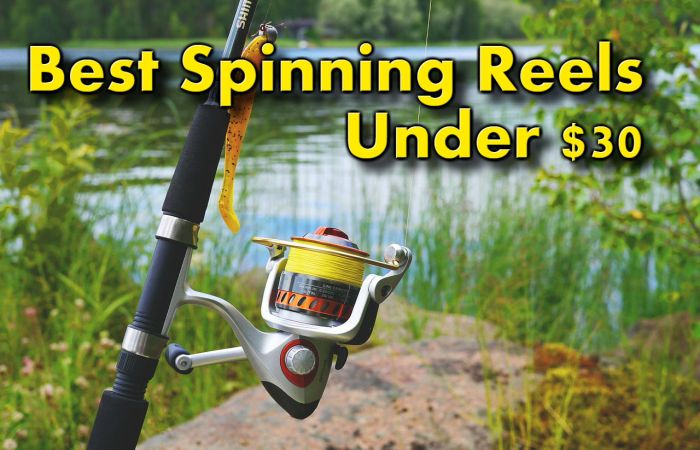 best spinning reels fishing