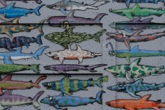 Ban Shark Finning mural by BMD / Cable Street / 2013